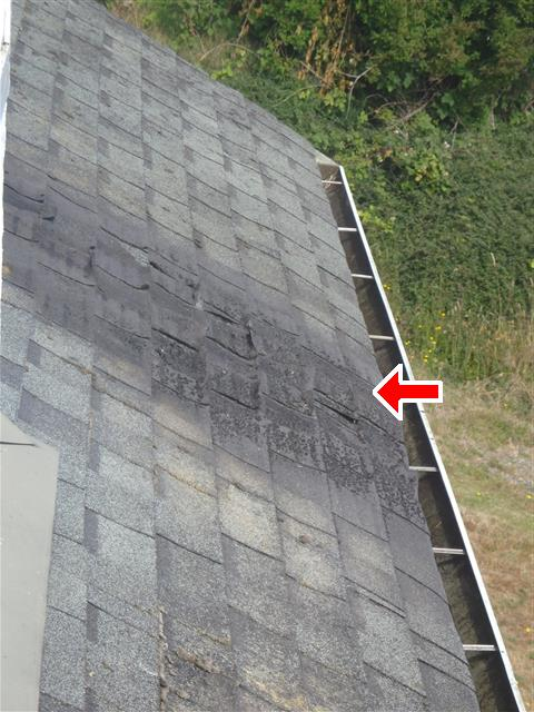 roof_6